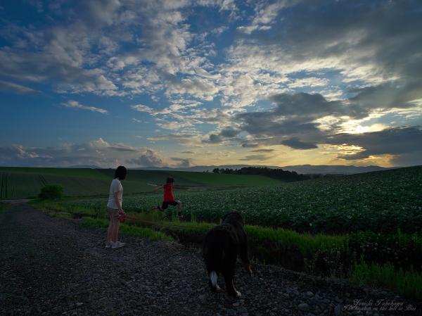 f:id:nijinotsumiki:20120706210318j:image