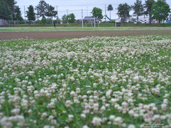 f:id:nijinotsumiki:20120709210300j:image