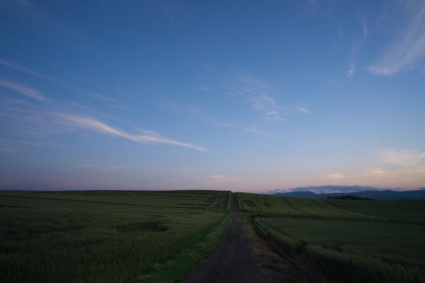 f:id:nijinotsumiki:20120710224956j:image