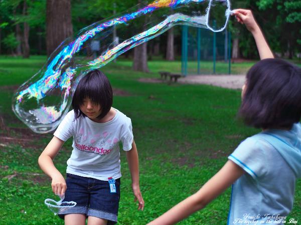 f:id:nijinotsumiki:20120804160129j:image