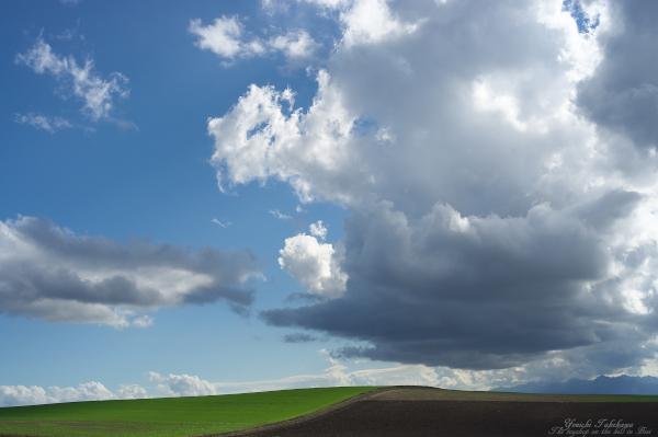 f:id:nijinotsumiki:20120915230829j:image