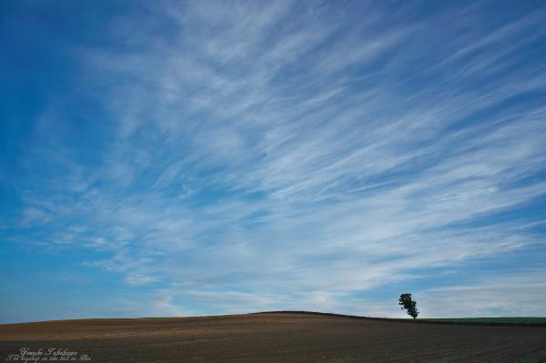 f:id:nijinotsumiki:20121005205423j:image