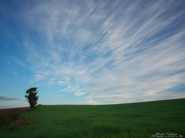 f:id:nijinotsumiki:20121005205919j:image