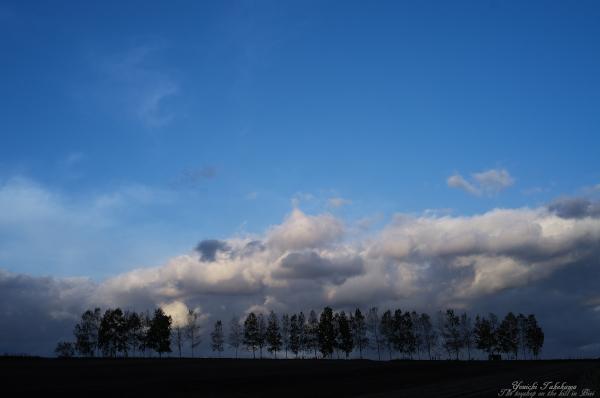 f:id:nijinotsumiki:20121018201606j:image