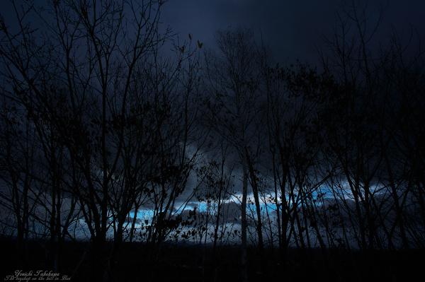 f:id:nijinotsumiki:20121107182446j:image