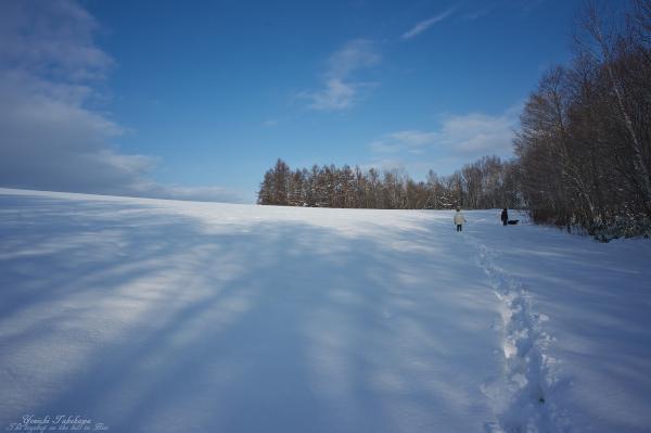 f:id:nijinotsumiki:20121123205757j:image