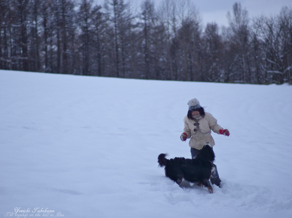 f:id:nijinotsumiki:20121125193744j:image