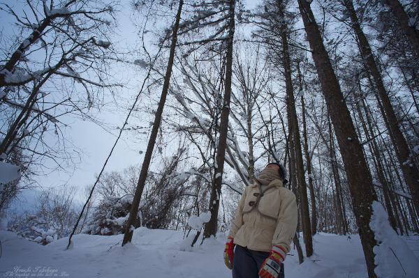 f:id:nijinotsumiki:20121226215858j:image