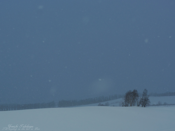 f:id:nijinotsumiki:20121228161204j:image