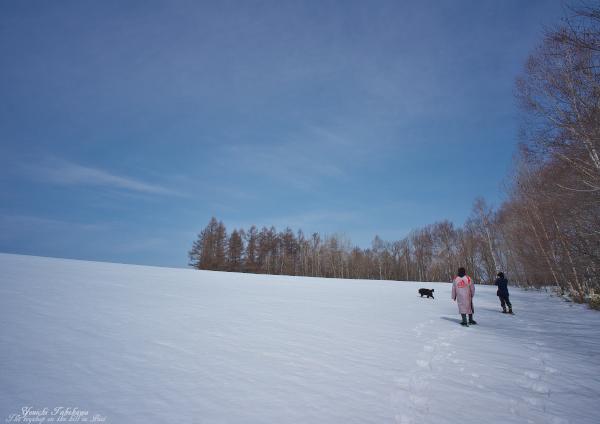 f:id:nijinotsumiki:20130406204156j:image