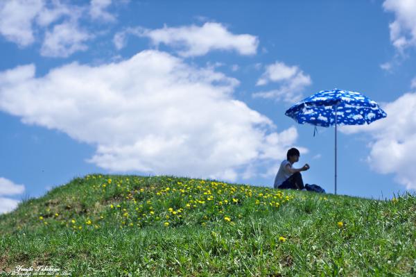 f:id:nijinotsumiki:20130606202727j:image