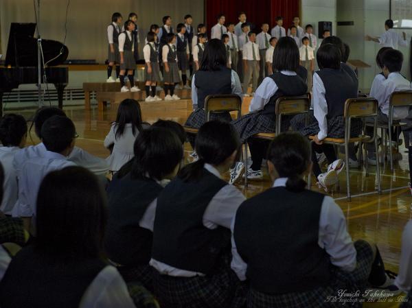 f:id:nijinotsumiki:20130921192532j:image