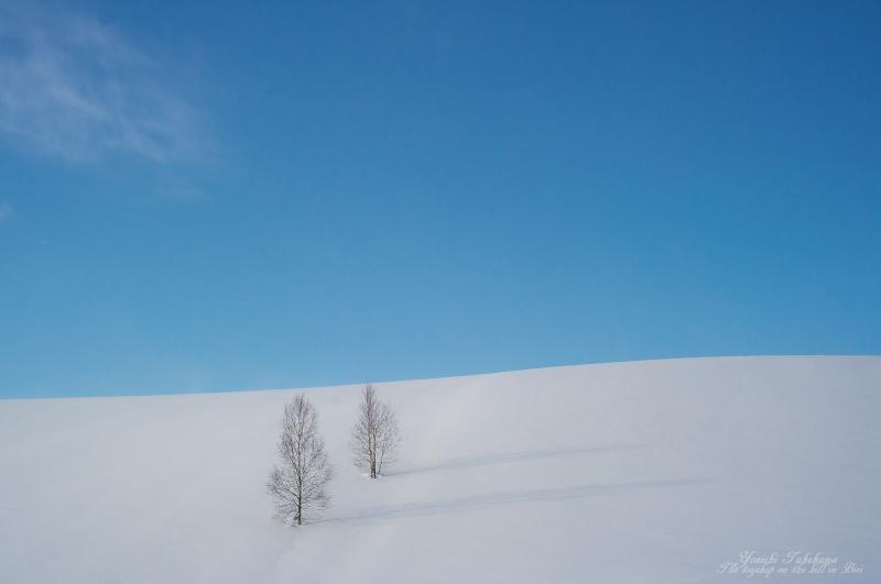 f:id:nijinotsumiki:20140116202329j:image