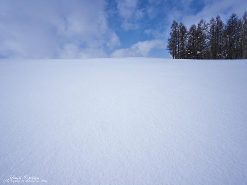 f:id:nijinotsumiki:20140211144155j:image