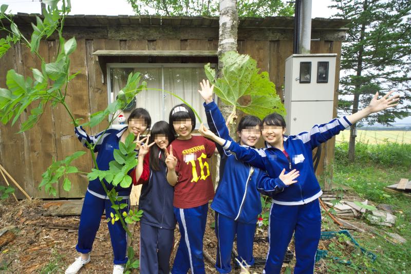 f:id:nijinotsumiki:20150727185322j:image
