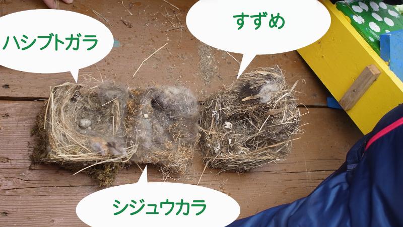 f:id:nijinotsumiki:20150920075544j:image
