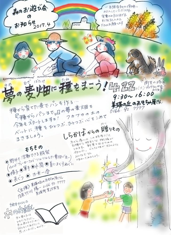 f:id:nijinotsumiki:20170421074740j:plain