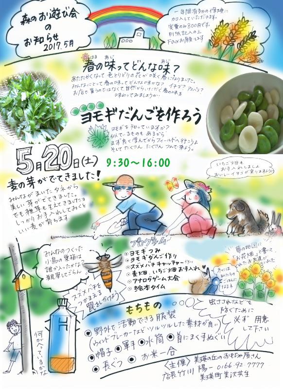 f:id:nijinotsumiki:20170519215101j:plain