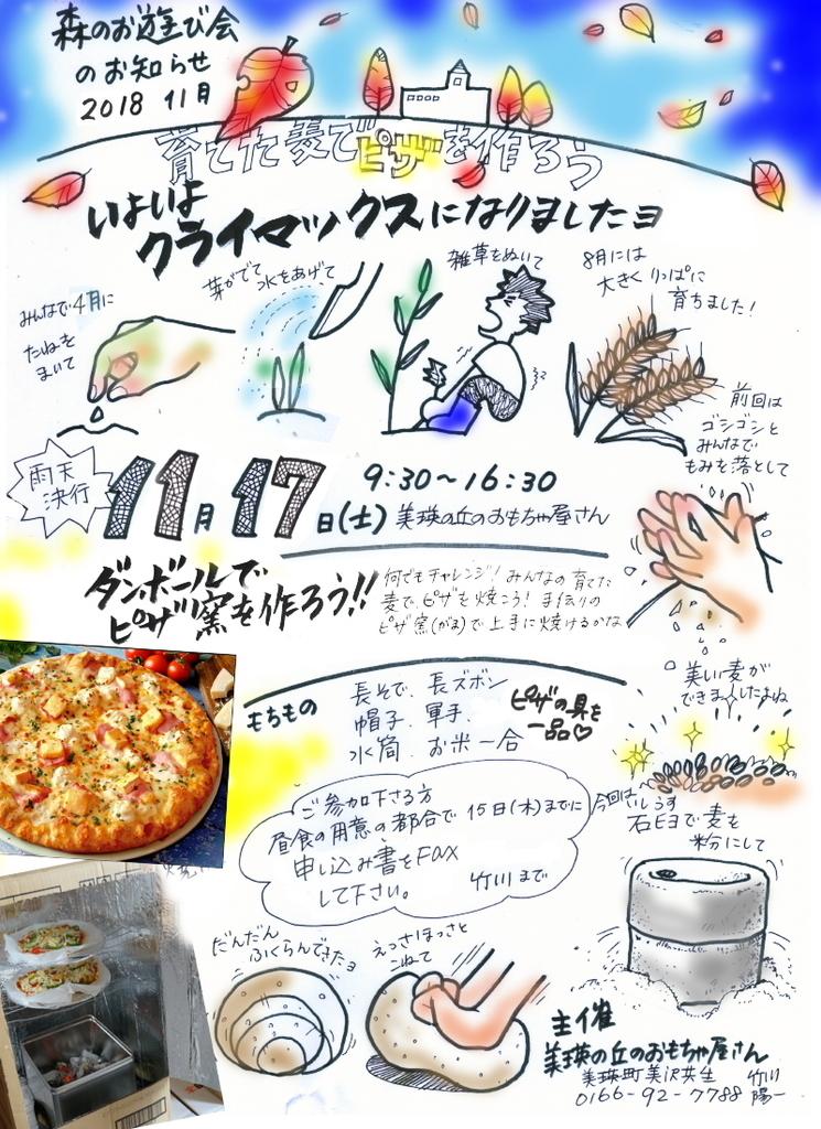 f:id:nijinotsumiki:20181116234946j:plain