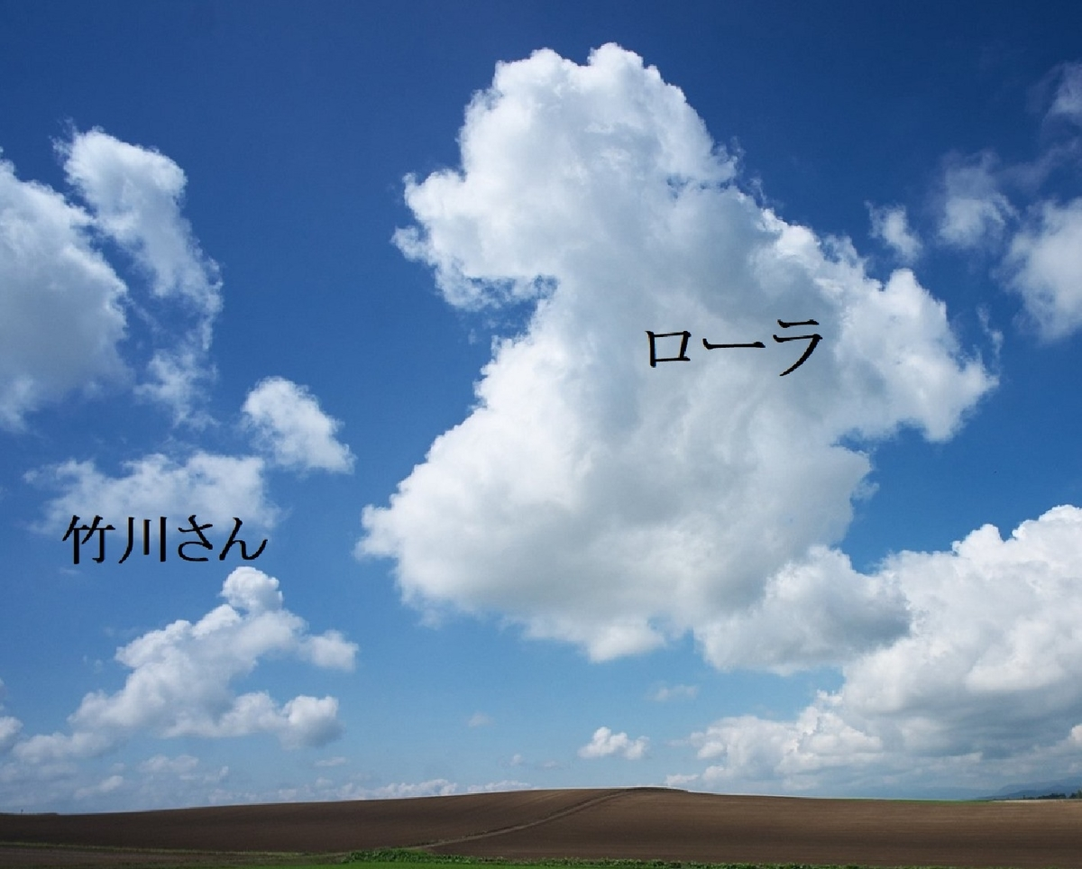 f:id:nijinotsumiki:20190618080919j:plain