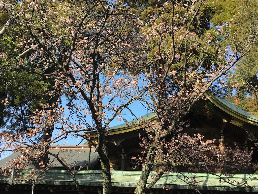 f:id:nijiro7:20170202124109j:image