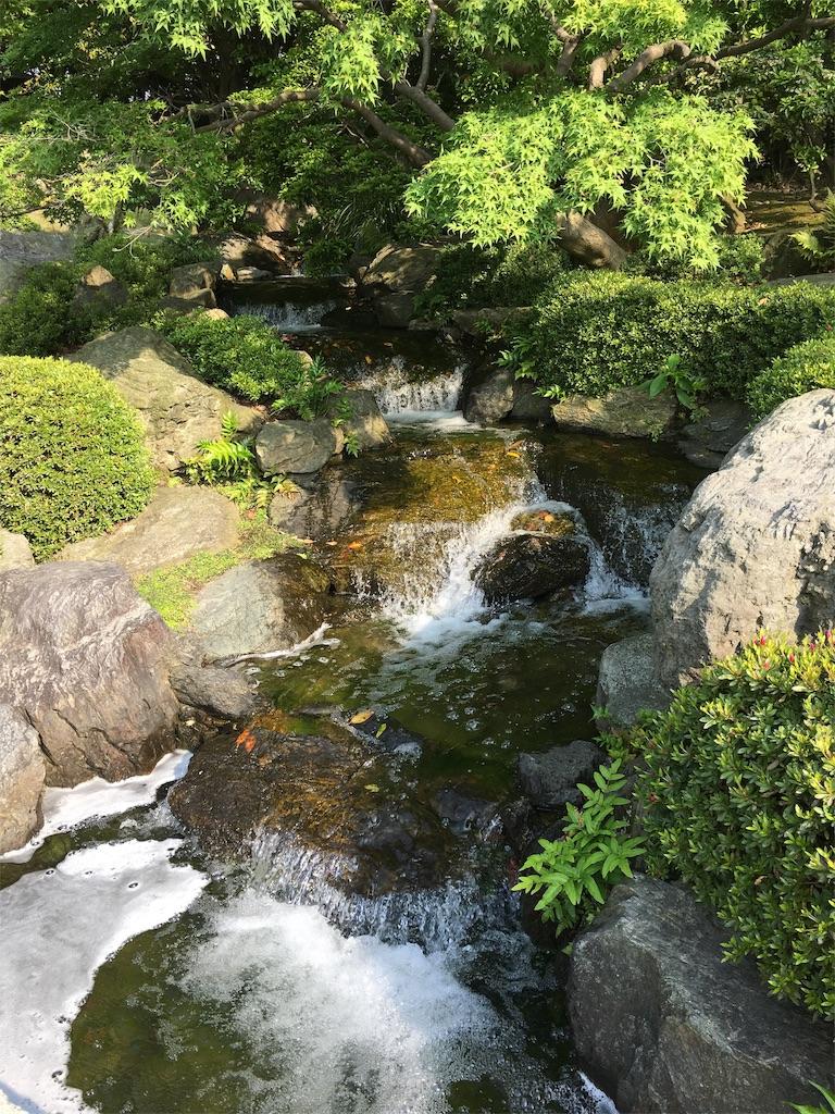 f:id:nijiro7:20190515060708j:image