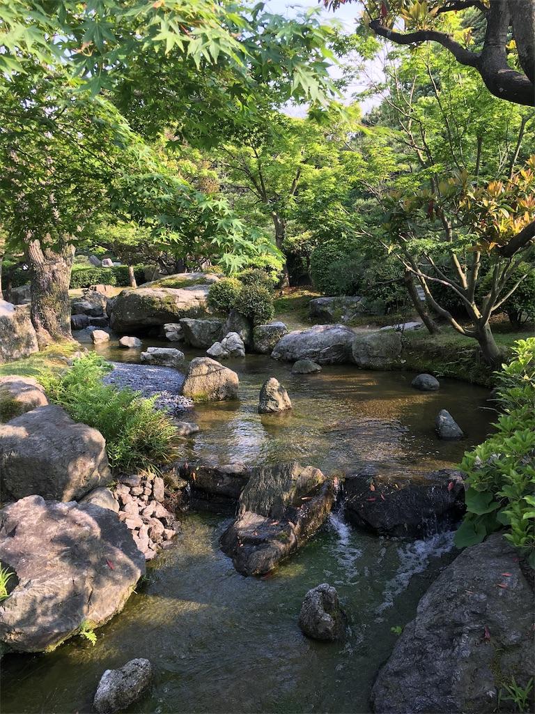 f:id:nijiro7:20190515061146j:image