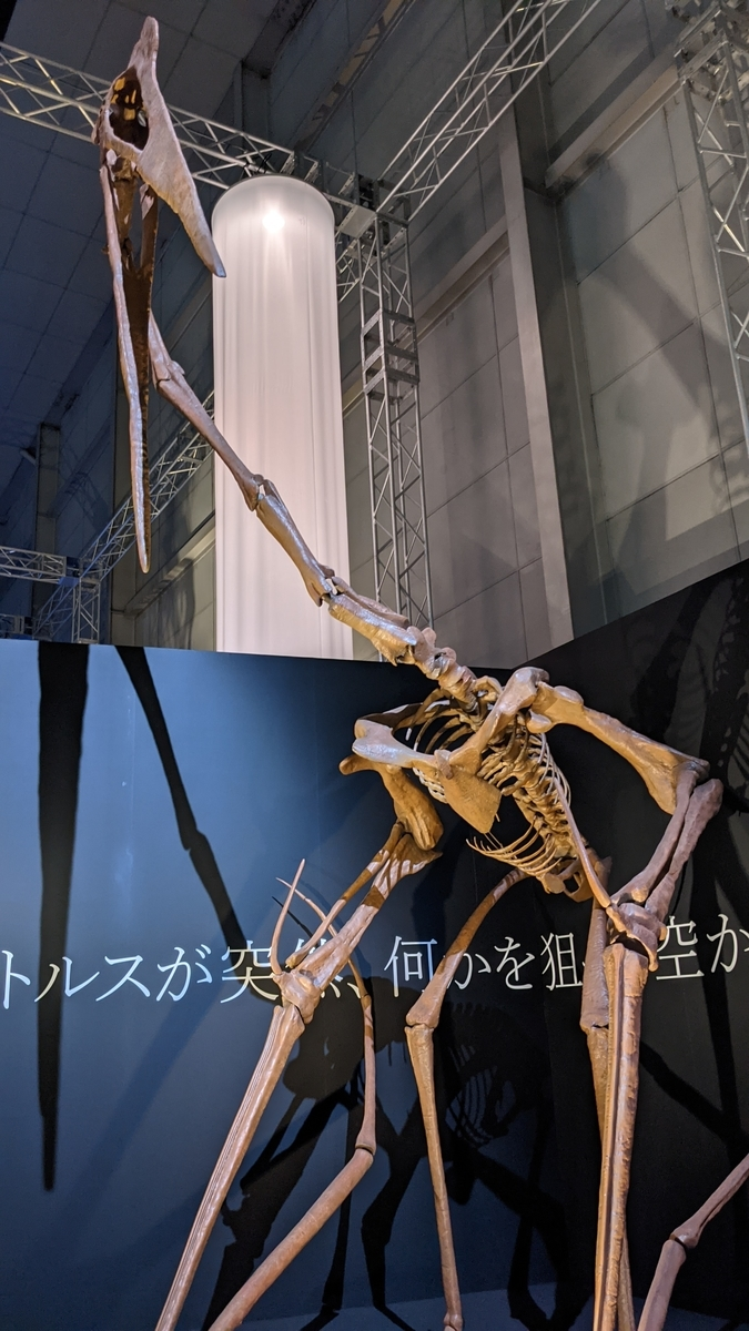 f:id:nika-landmark:20210910135133j:plain