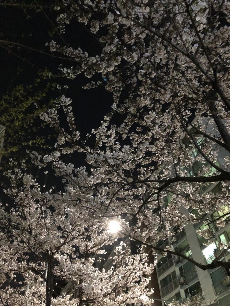 f:id:nikibi-ato:20180409021135j:plain