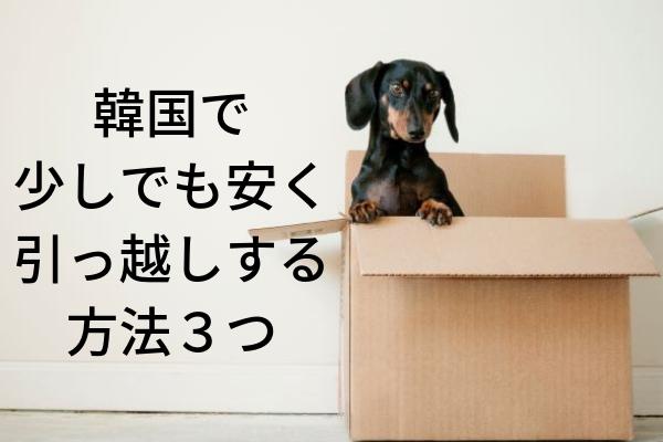 f:id:nikibi-ato:20190210102603j:plain