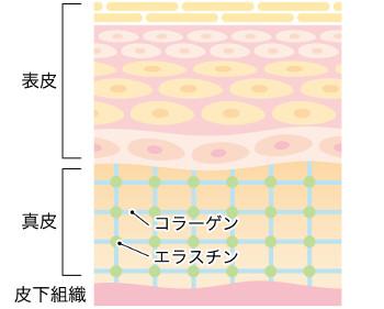 f:id:nikibi-naosu:20170731115535j:plain