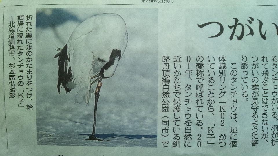 f:id:nikkokisuge:20130128134833j:image:w360:left
