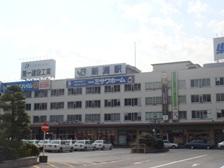 f:id:nikkokisuge:20130414092803j:image:left