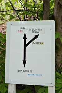f:id:nikkokisuge:20180511035523j:image:left