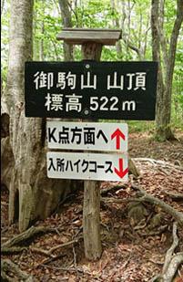 f:id:nikkokisuge:20180511040758j:image:left