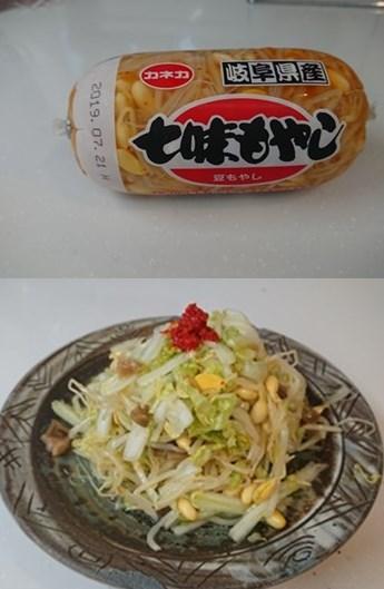 f:id:nikkokisuge:20190509160305j:plain:left