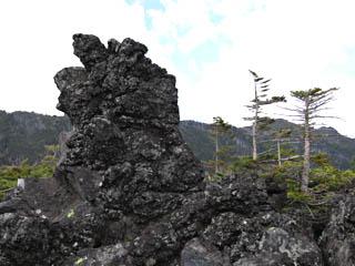 f:id:nikkokisuge:20190624061817j:plain:left
