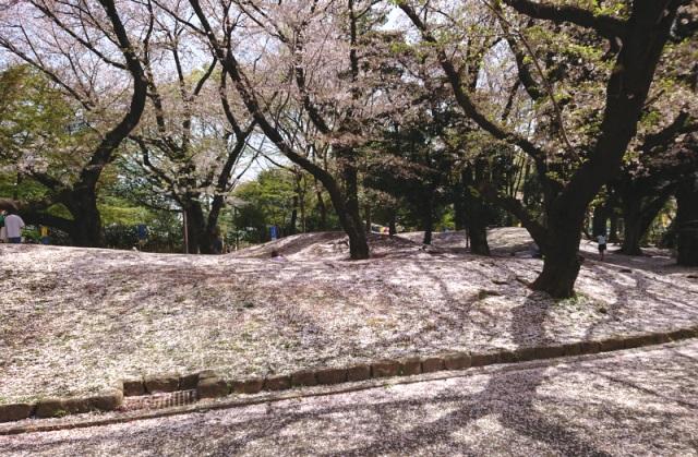 f:id:nikkokisuge:20210402135044j:plain