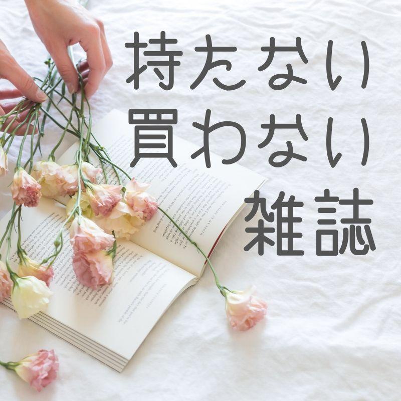 f:id:niko-blog:20190530175921j:plain