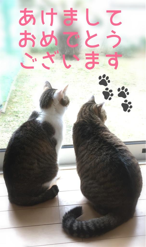 f:id:niko25neko3:20200101210834j:image