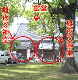 f:id:nikogori12:20050521154848j:image