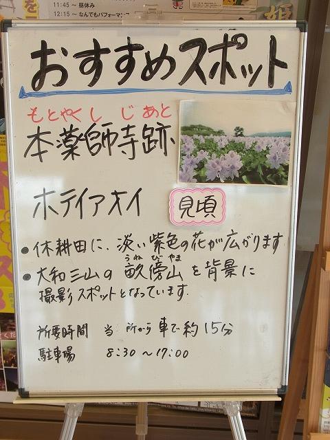 f:id:nikomakoyoga:20180907205145j:plain