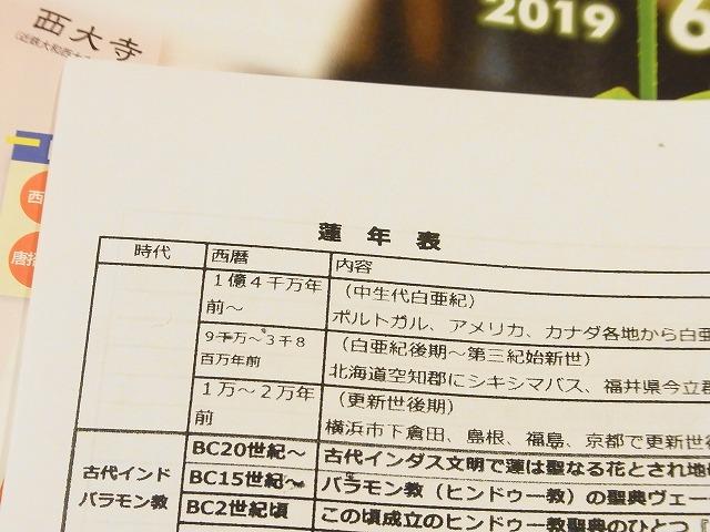 f:id:nikomakoyoga:20190714144204j:plain