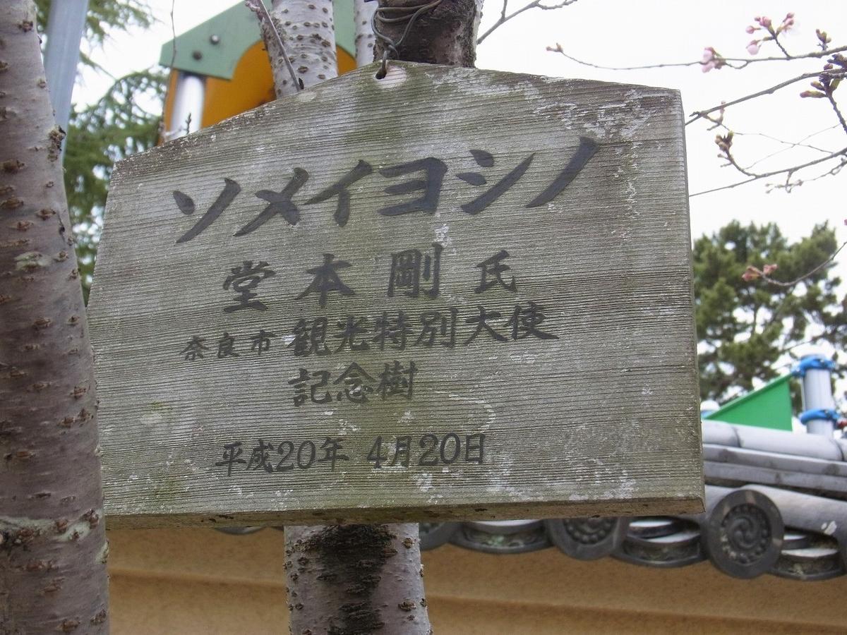 f:id:nikomakoyoga:20210320185928j:plain