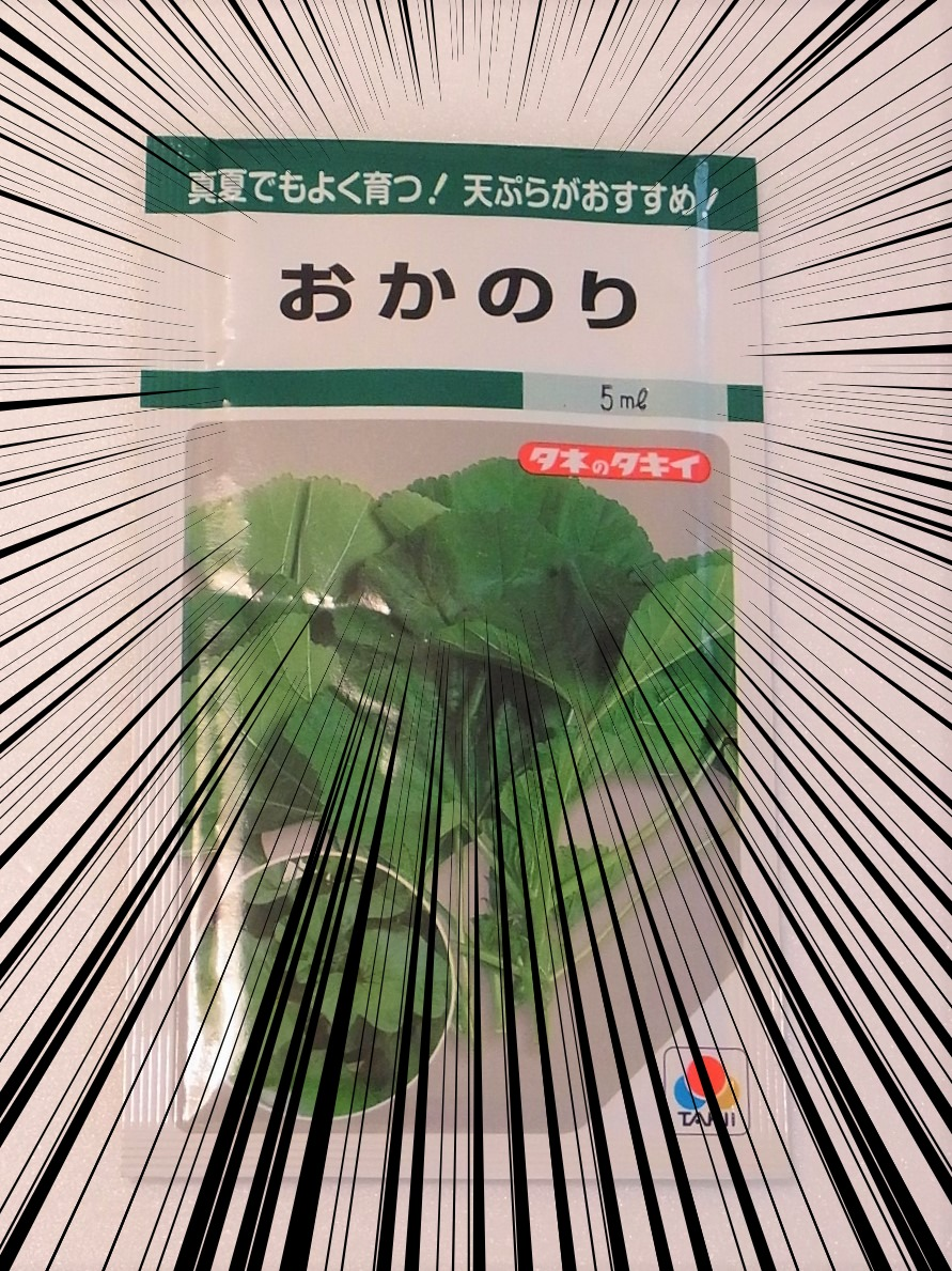 f:id:nikomakoyoga:20210613152703j:plain