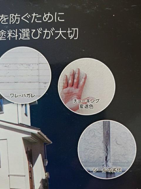 f:id:nikonikopun0813:20200403132346j:image