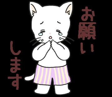 f:id:nikono:20190223154242p:plain