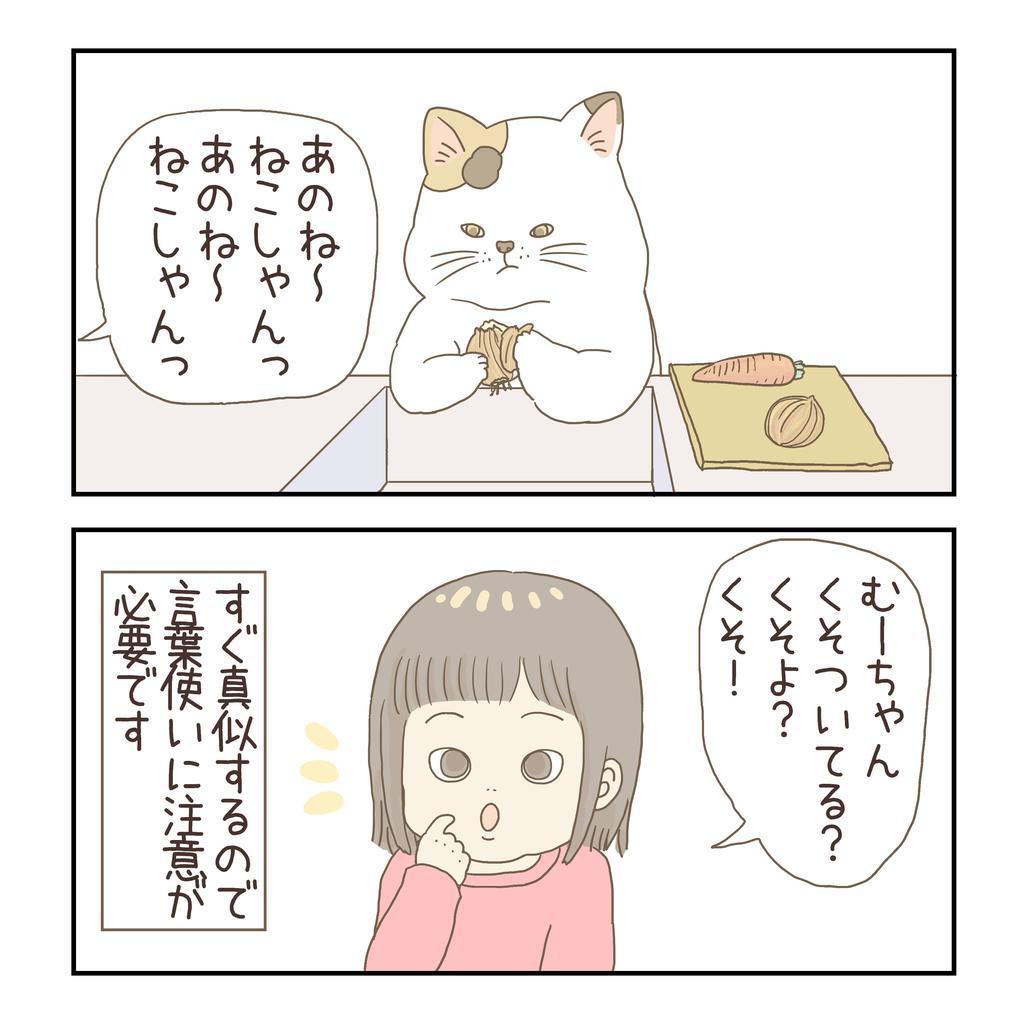 f:id:nikono:20190308232359j:plain