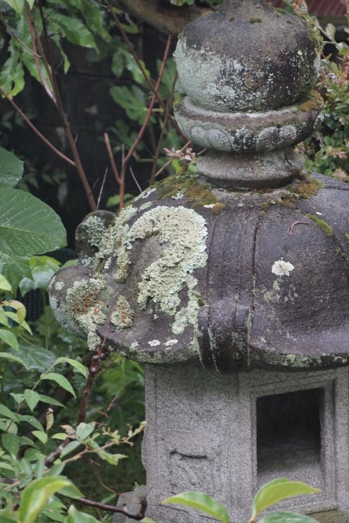 f:id:nikosuzumemi:20160616151246j:plain