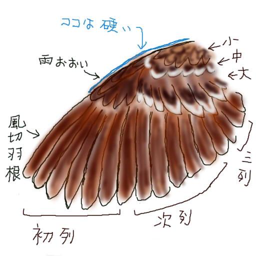 f:id:nikosuzumemi:20160713201306j:plain
